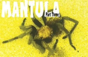 Mantula-3-Use
