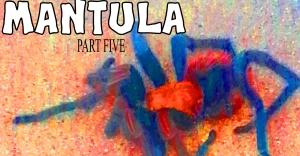 Mantula-5