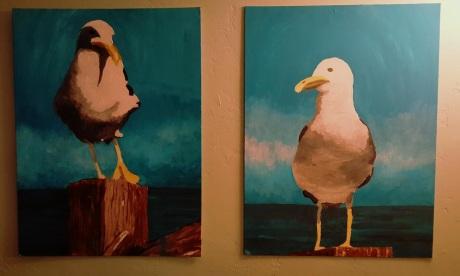 Gulls-1